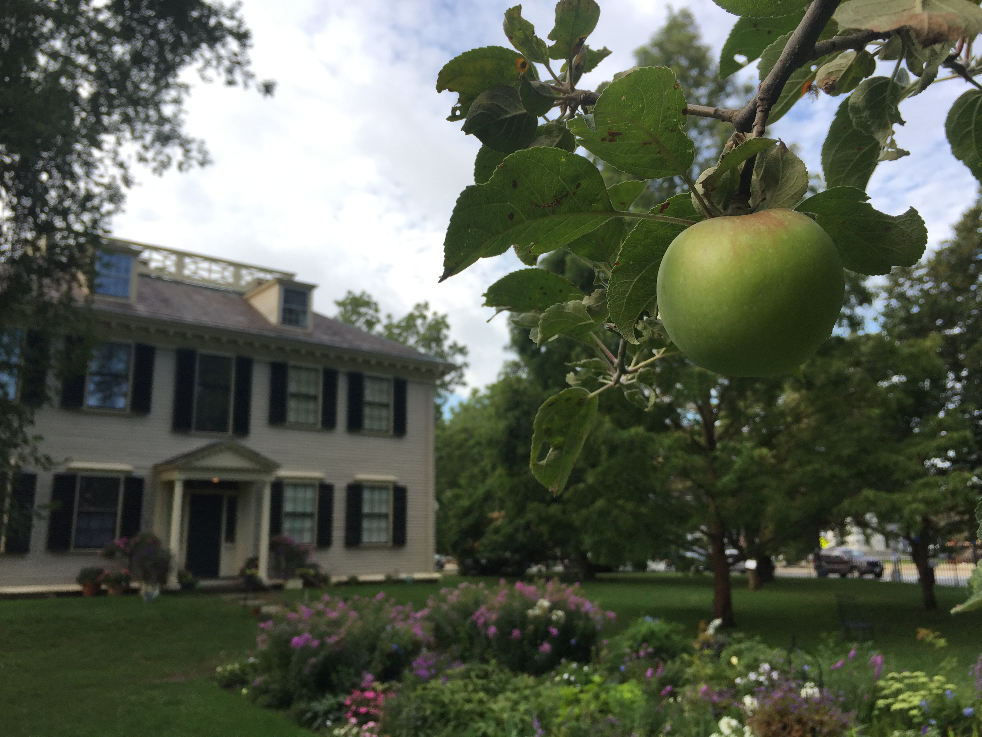 Support Our Heritage Apple Trees for the 2018 – 2019 Season
